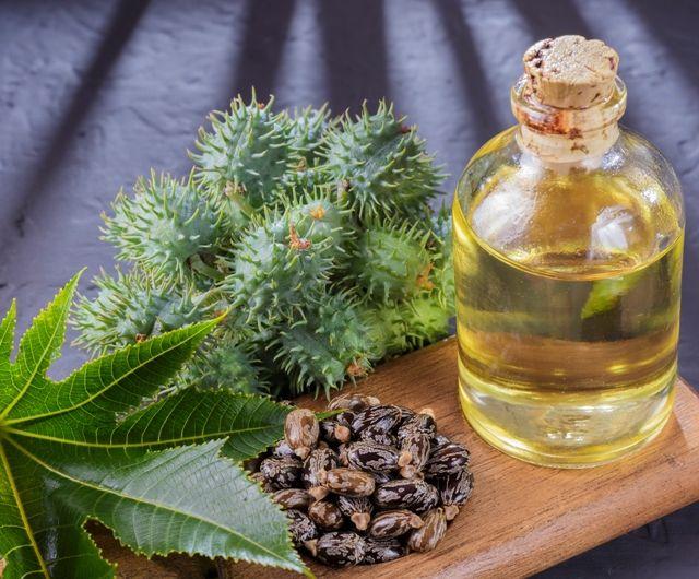 Касторовое масло для лечения папиллом в интимных местах