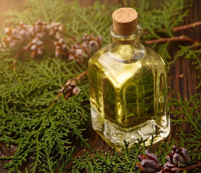 Касторовое масло от папиллом — особенности применения